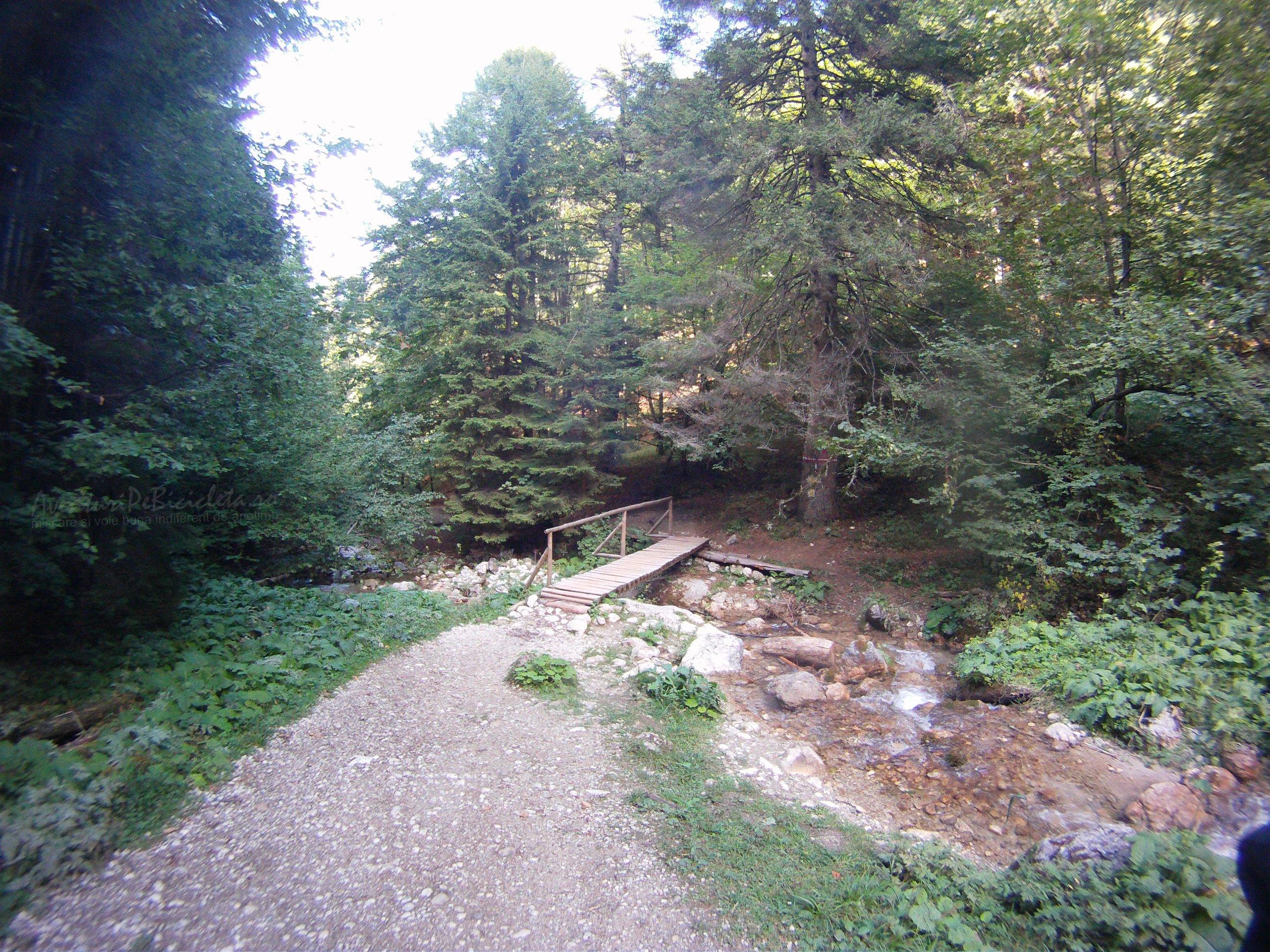 Aventuri pe bicicleta – Tura MARE – Coborare de la: Canionul si Cascada Sapte Scari