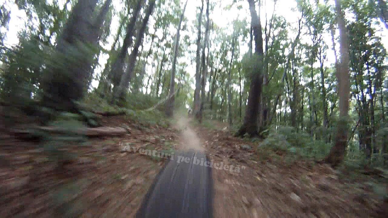 Aventuri pe bicicleta : Casoaia Bike Race 2013